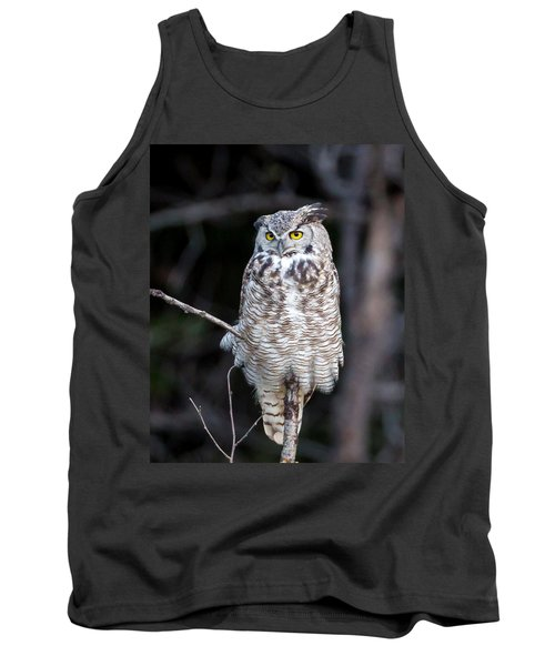 Great Horned Owl  Tank Top by Jack Bell