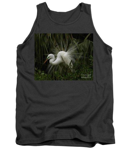 Great White Egret Displaying Tank Top