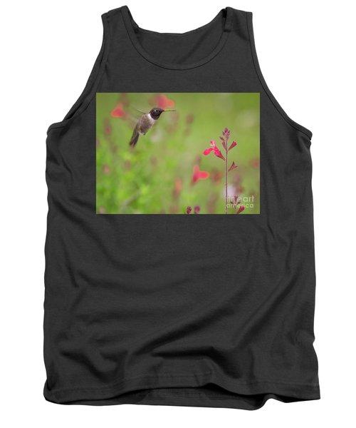 Hummingbird And Sage Tank Top