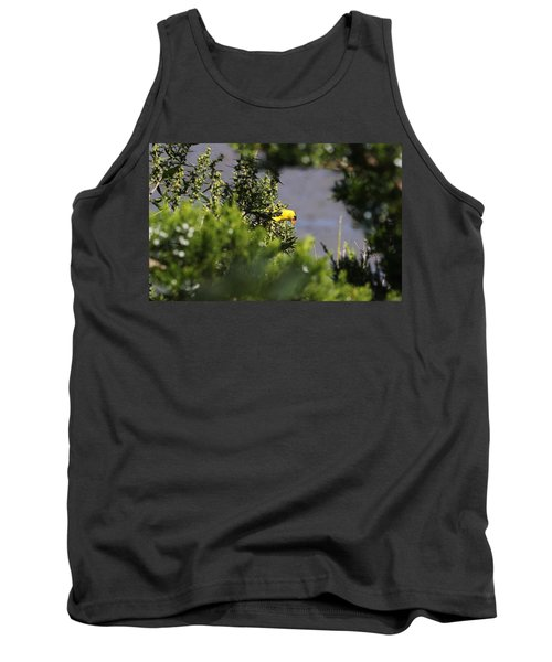 Is It Safe To Come Out? Tank Top