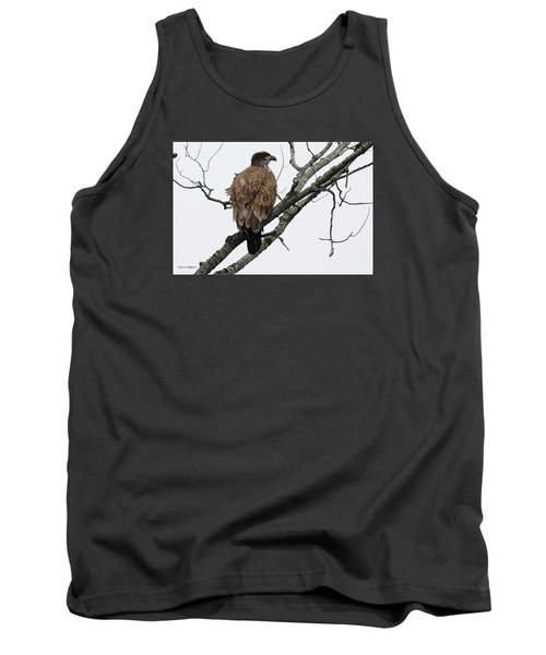 Tank Top featuring the photograph Juvenile Eagle  by Steven Clipperton
