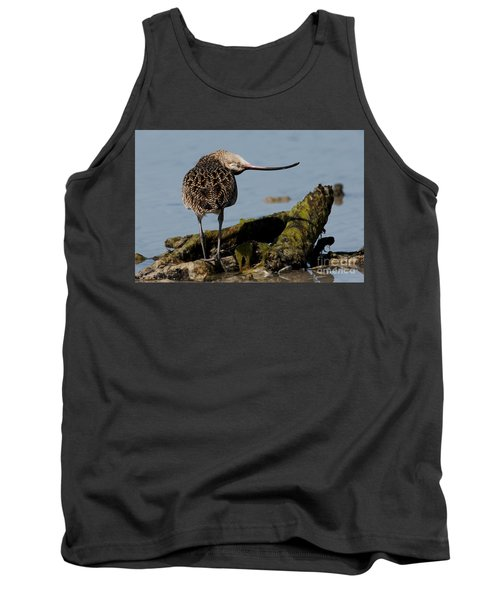 Long-billed Curlew Tank Top