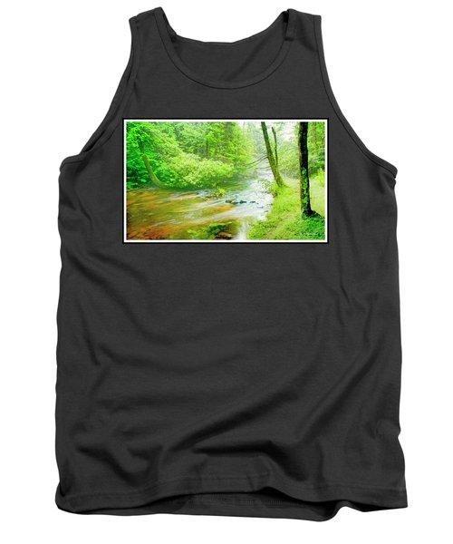 Mountain Stream, Pocono Mountains, Pennsylvania Tank Top by A Gurmankin