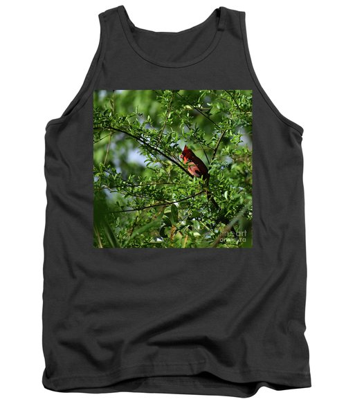 Tank Top featuring the photograph Mr Red by Skip Willits