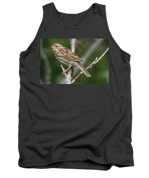 Savannah Sparrow Tank Top