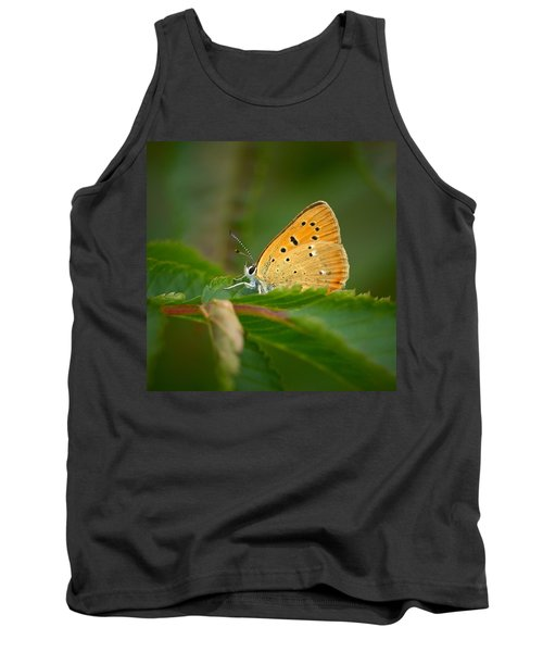 Tank Top featuring the photograph Scarce Copper by Jouko Lehto