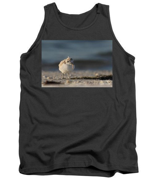 Snowy Plover Tank Top