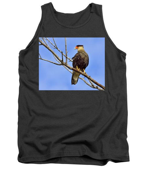 Tank Top featuring the photograph Southern Comfort by Tony Beck