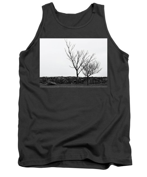 Stone Wall With Trees In Winter Tank Top