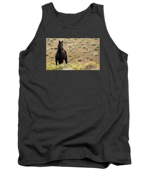 Wild Black Mustang Stallion Tank Top