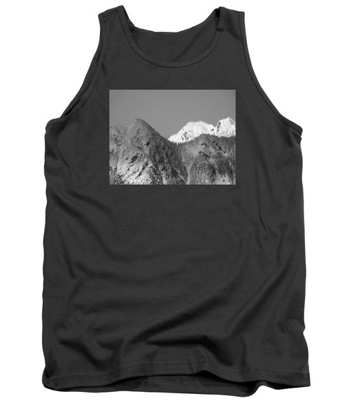 Winter Delight Tank Top by Brian Chase