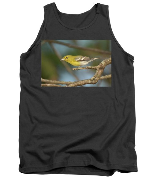 Yellow-throated Vireo Tank Top by Alan Lenk