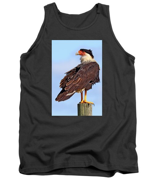Crested Caracara Tank Top