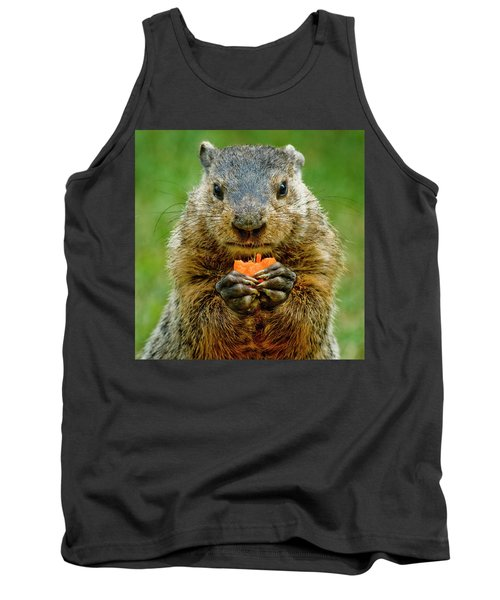 A Hungry Fellow  Tank Top by Paul W Faust - Impressions of Light