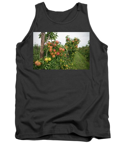 Apple Orchard Tank Top by Hans Engbers