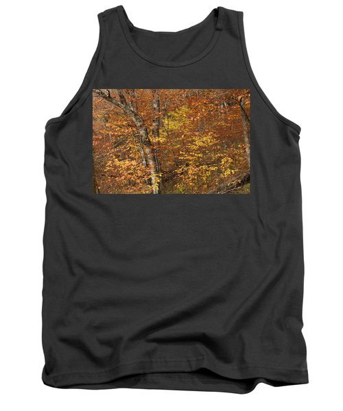 Autumn In The Woods Tank Top