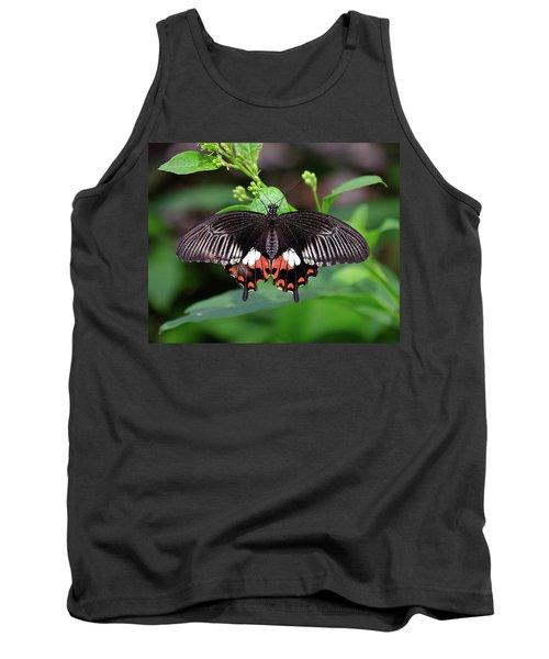 Great Mormon Butterfly Tank Top