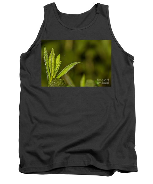Tightrope Tank Top by Brian Wright