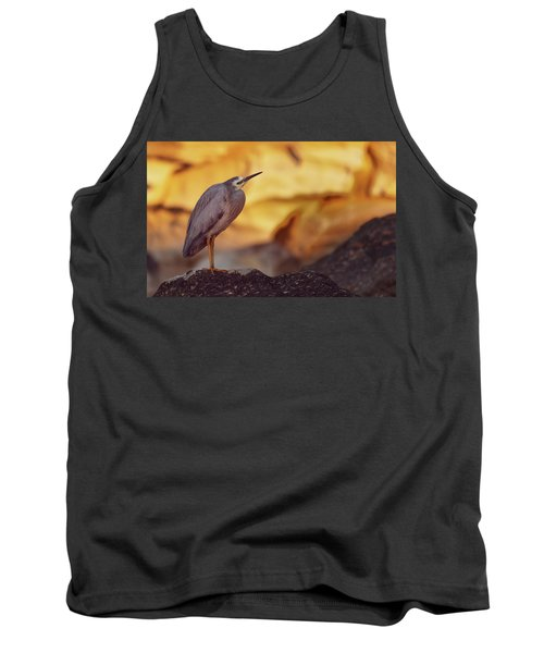 White-faced Heron At The Beach Tank Top