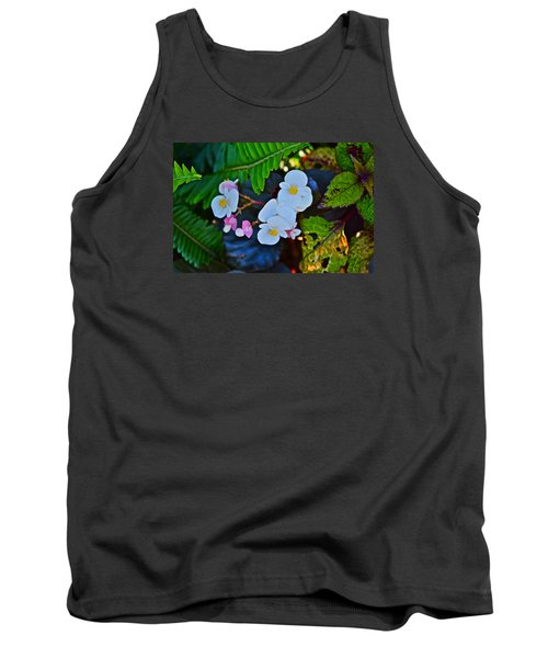 2015 Early September At The Garden Begonias Tank Top
