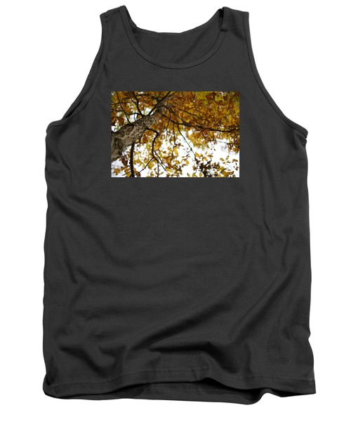 Tank Top featuring the photograph Fall by Heidi Poulin
