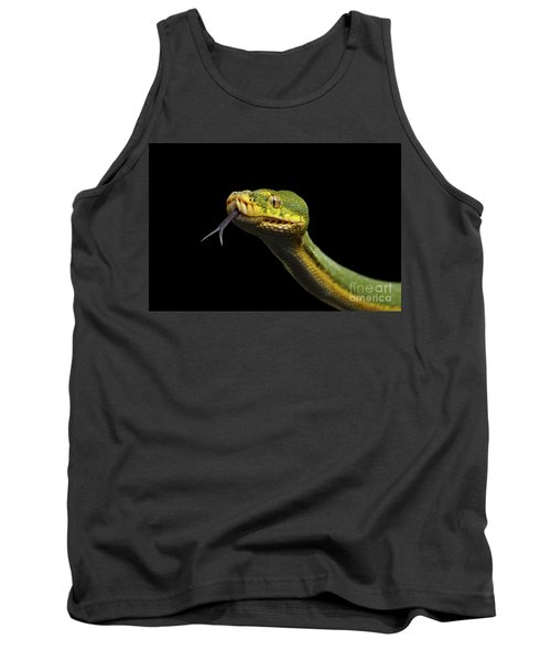 Green Tree Python. Morelia Viridis. Isolated Black Background Tank Top