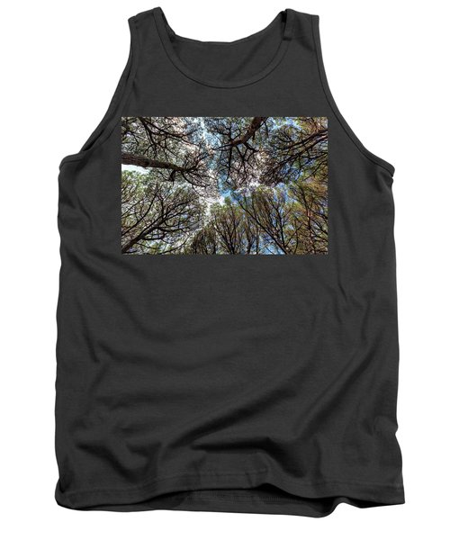 Pinewood Forest, Cecina, Tuscany, Italy Tank Top