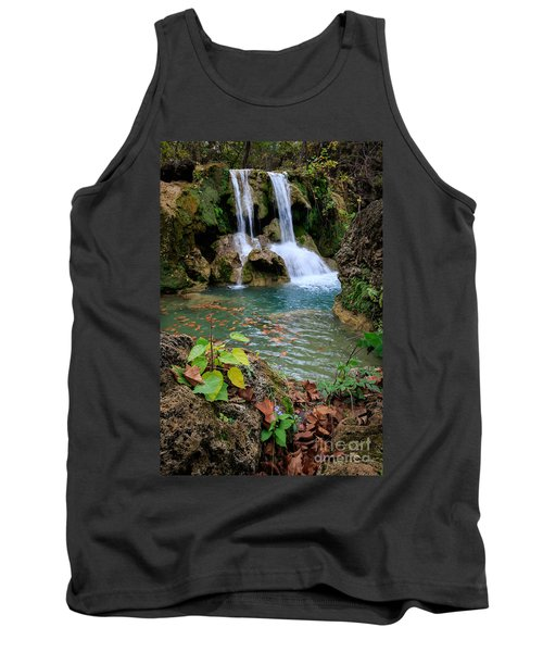Price Falls In Autumn Color.  Tank Top