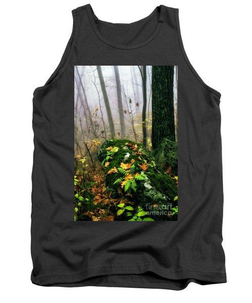 Autumn Monongahela National Forest Tank Top