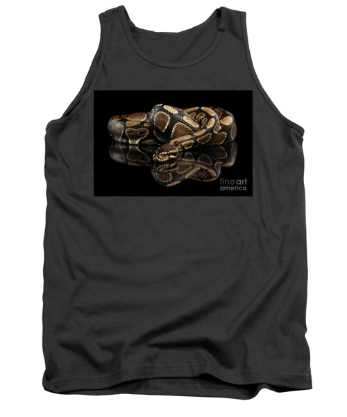 Ball Or Royal Python Snake On Isolated Black Background Tank Top