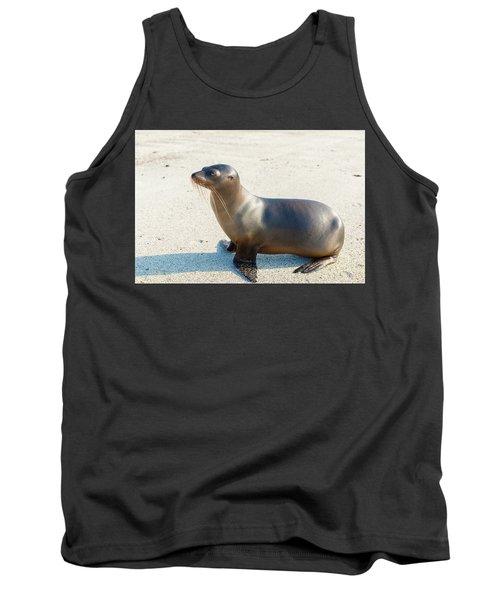 Sea Lion In Galapagos Islands Tank Top