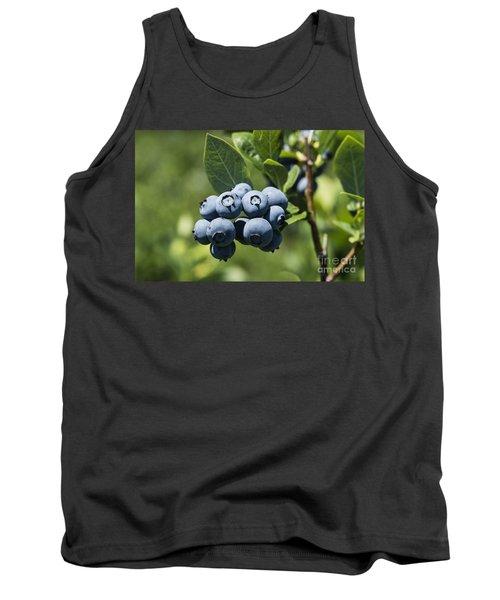 Blueberry Bush Tank Top