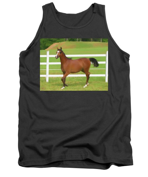 A Beautiful Arabian Filly In The Pasture. Tank Top