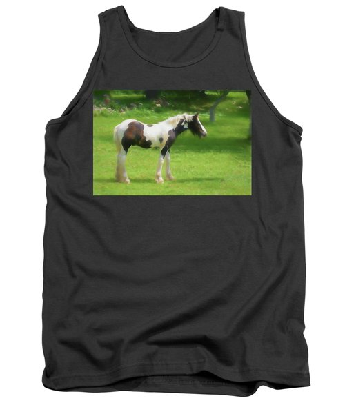 A Beautiful Young Gypsy Vanner Standing In The Pasture Tank Top