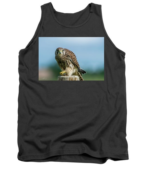 A Beautiful Young Kestrel Looking Behind You Tank Top