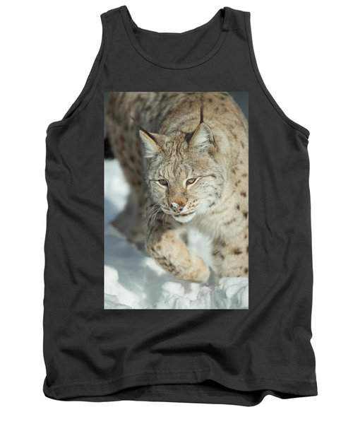 A Eurasian Lynx In Snow Tank Top