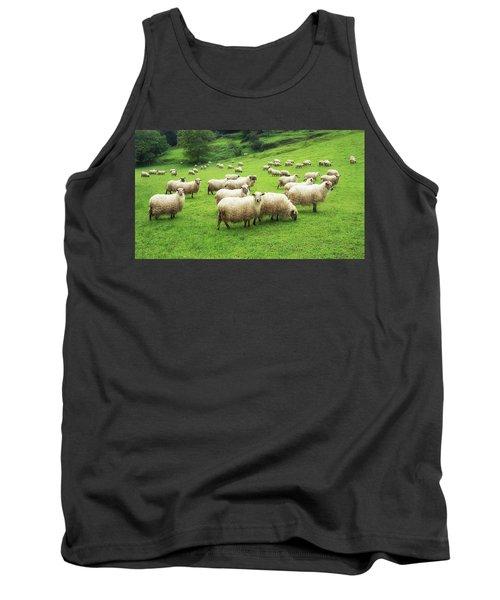 A Flock Of Sheep Tank Top