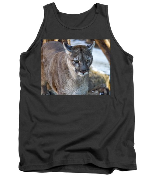 A Stunning Mountain Lion Tank Top