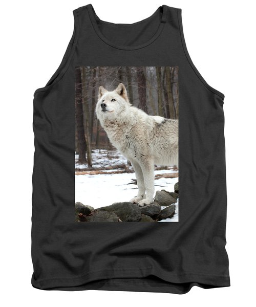 A Wolfs Modeling Pose Tank Top by Gary Slawsky
