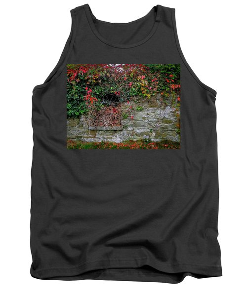 Tank Top featuring the photograph Abandoned Irish Cottage In Autumn by James Truett