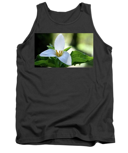 After The Rain Tank Top by Sheila Ping