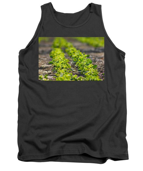 Agriculture- Soybeans 1 Tank Top