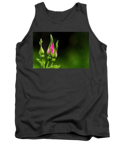 Tank Top featuring the photograph Alberta Rose Buds by Darcy Michaelchuk