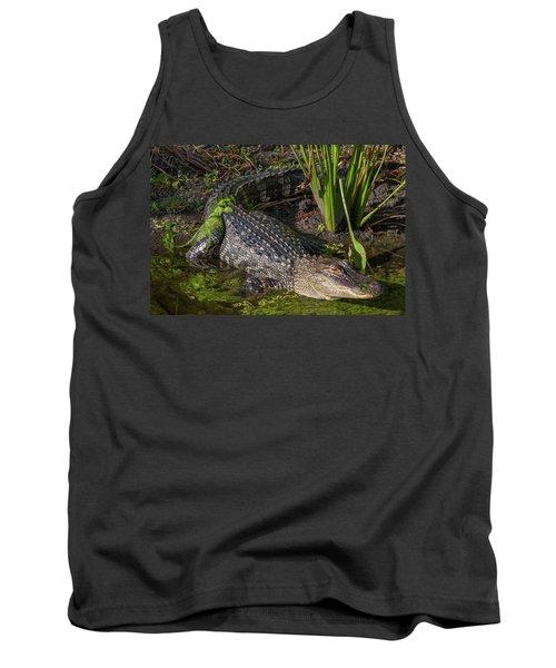 Algae Gator Tank Top