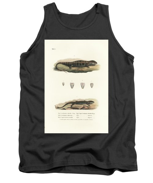 Alligator Lizards From Mexico Tank Top by Friedrich August Schmidt