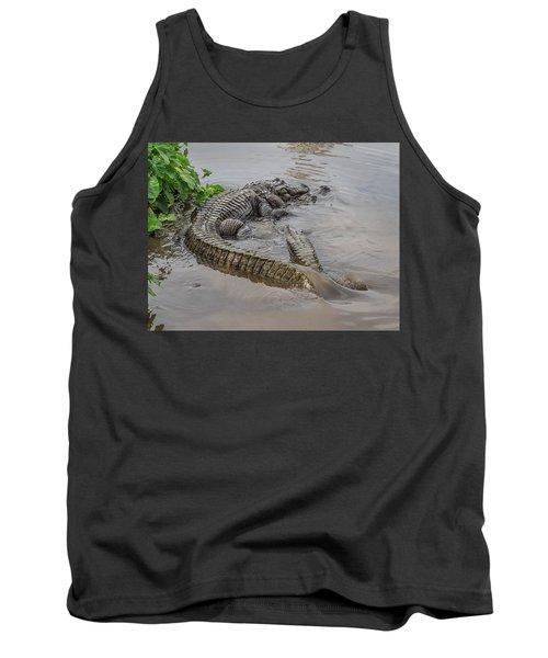 Alligators Courting Tank Top