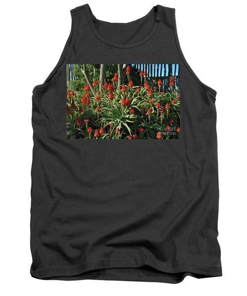 Aloe Choir Tank Top