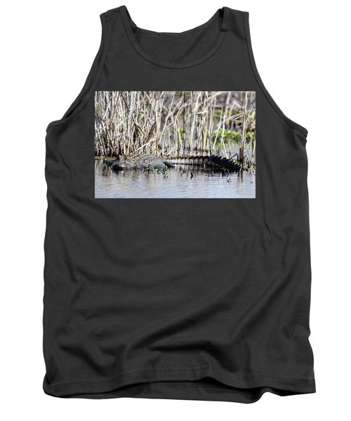 American Alligator Tank Top by Gary Wightman