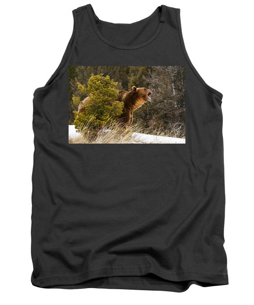 Angry Grizzly Behind Tree Tank Top