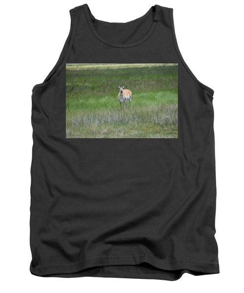 Prong Horned Antelope Lake John Swa Co Tank Top